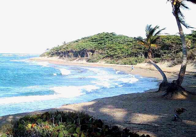 Encuentro Beach Sunlight